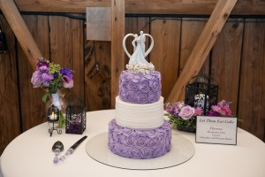 CrystalandDannyWedding June 10 2015 215